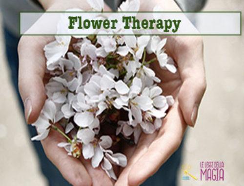 Flower Therapy: i fiori delle Fate e degli Angeli