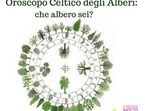 Oroscopo Celtico degli Alberi: tu che albero sei?