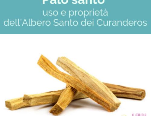 Palo Santo: uso e proprietà dell'Albero Santo dei Curanderos